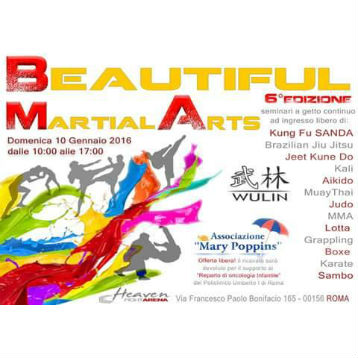 bautiful martial arts